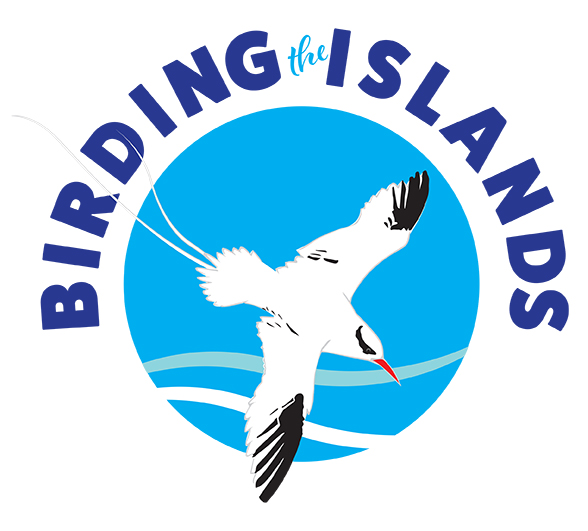 BIRDING THE ISLANDS logo 21cm x 21cm