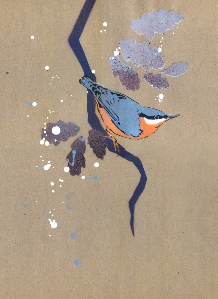 Nuthatch on brown paper