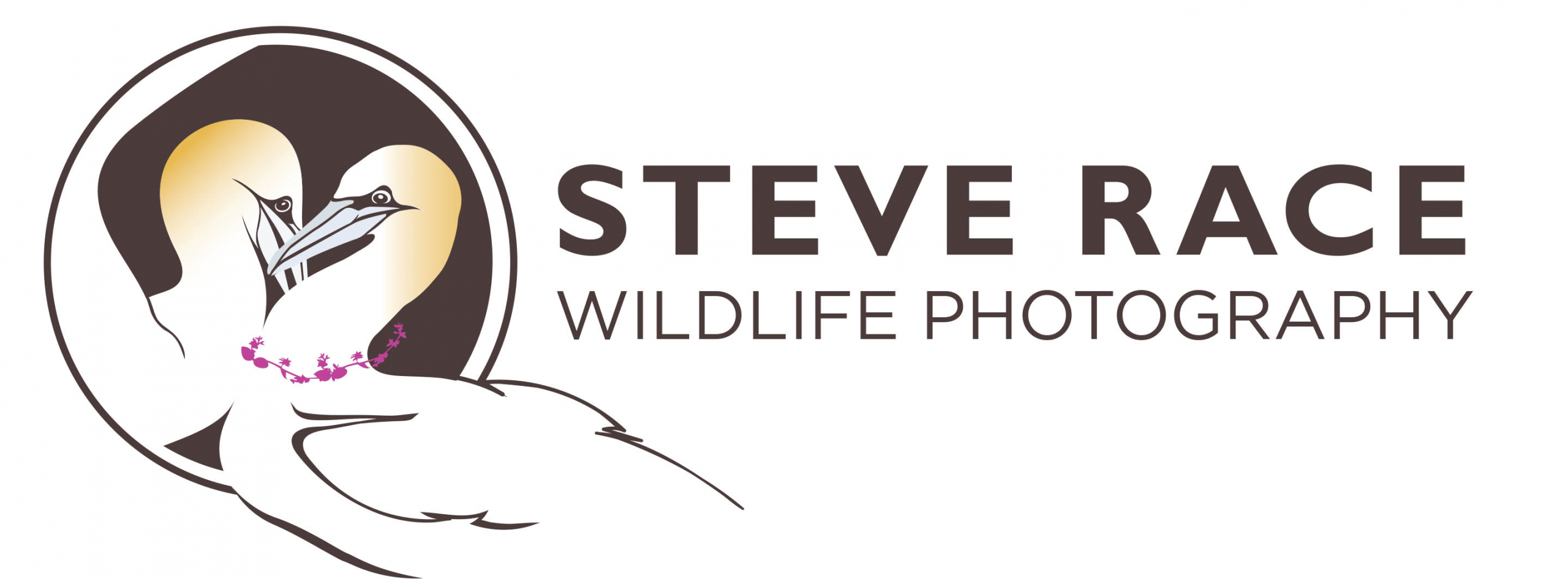 Steve Race Wildlife phototpgraphy FINAL logo 1
